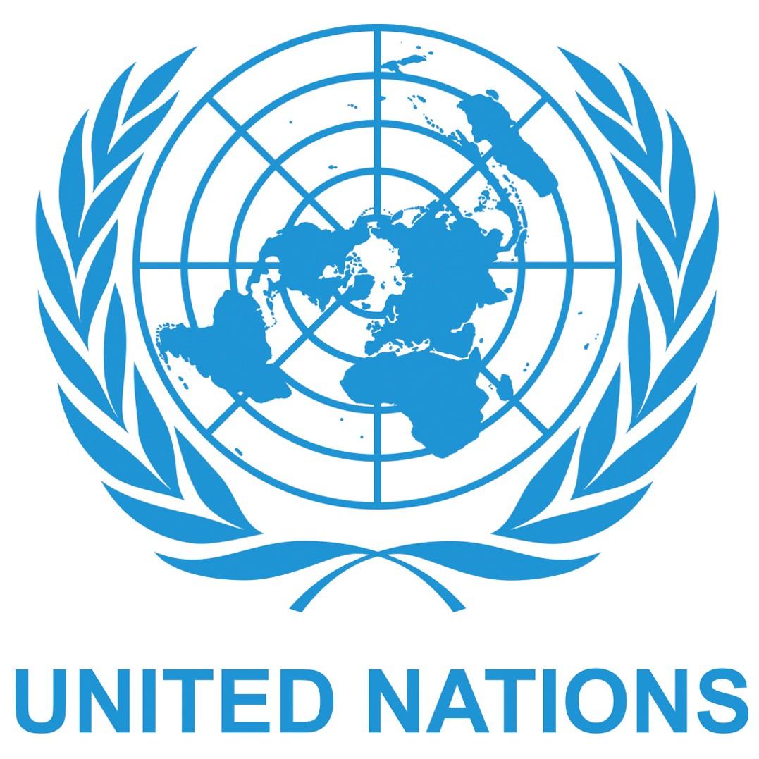 UN Global Pulse 2019, Geneva